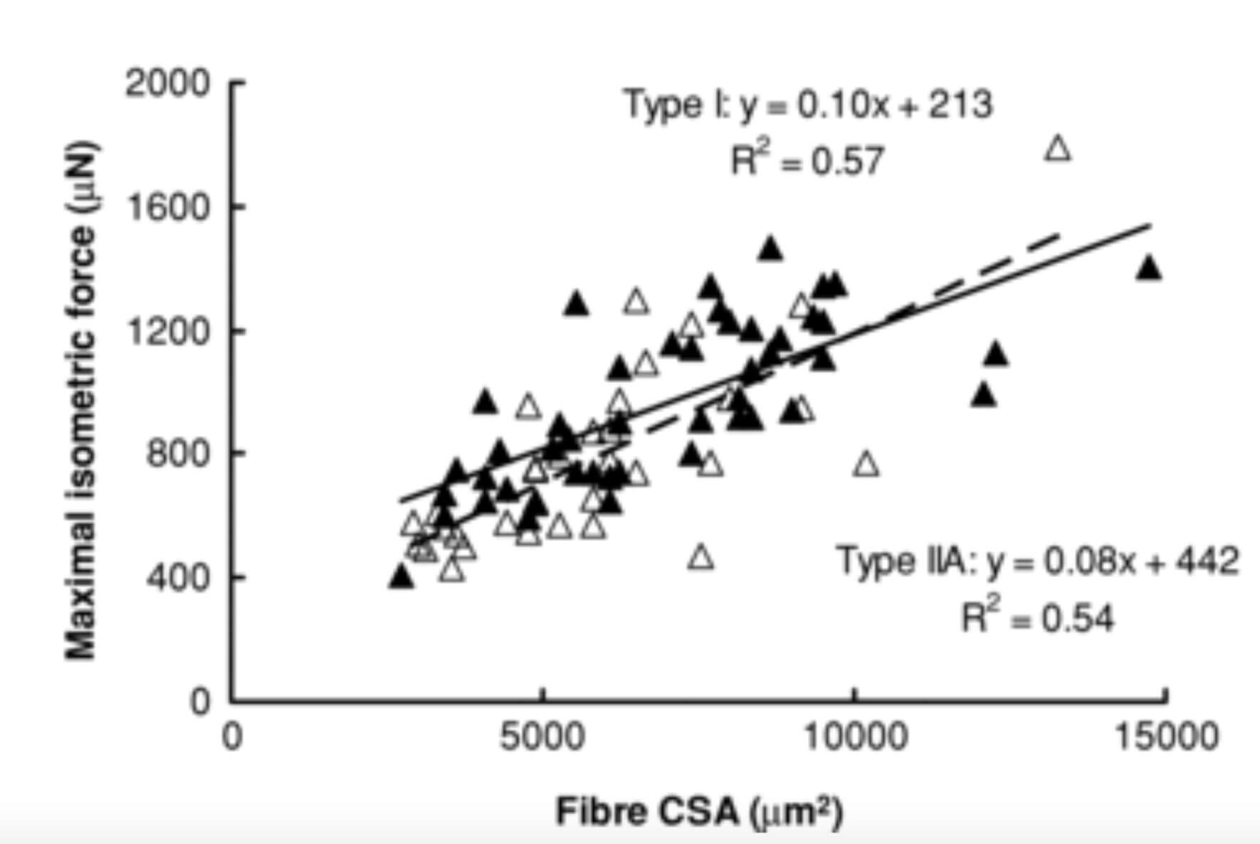 Bigger muscle fibers tend to be larger muscle fibers. From Gilliver, 2009.